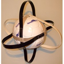 Horse-Ball Training Ball Multi-Color (Size 3)