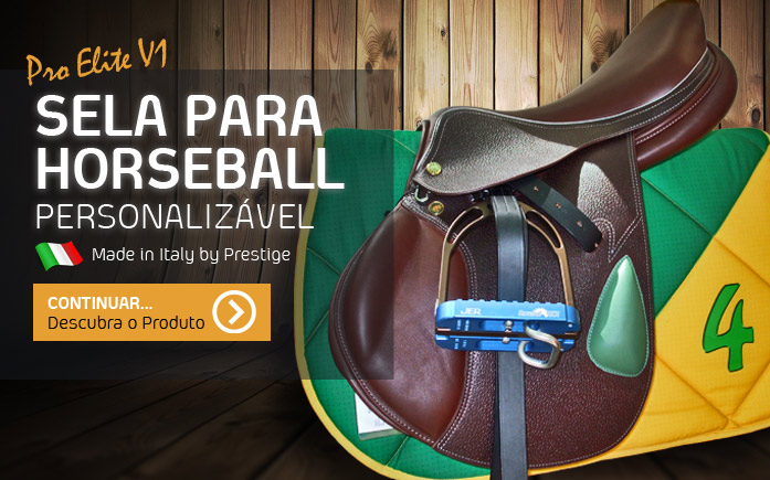 Selas de Horseball