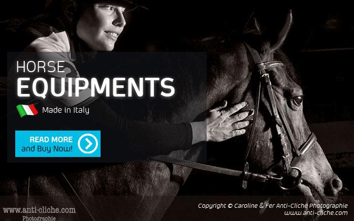 Horse Equipments 1