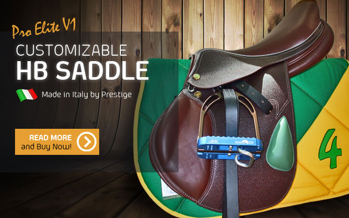 Horseball Saddle